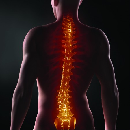 Geste-et-Posture-Anticipation-Prevention