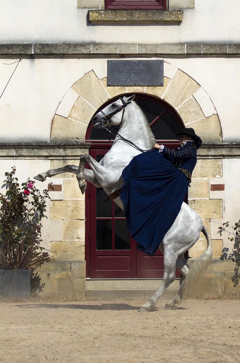 16- hublot 1 -Haras de la Vendée©Pascal Lahure-Photothèque CG85 (3)