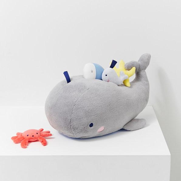Baleine Jacadi